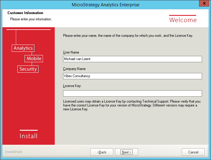 Screenshot MicroStrategy Customer Information